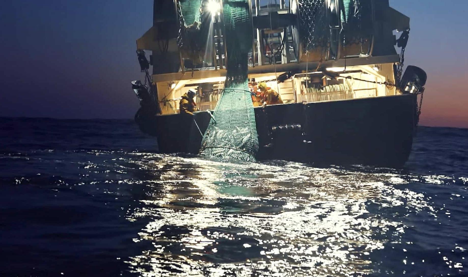 Seaspiracy – A Netflix Documentary – 350 PPM Ltd